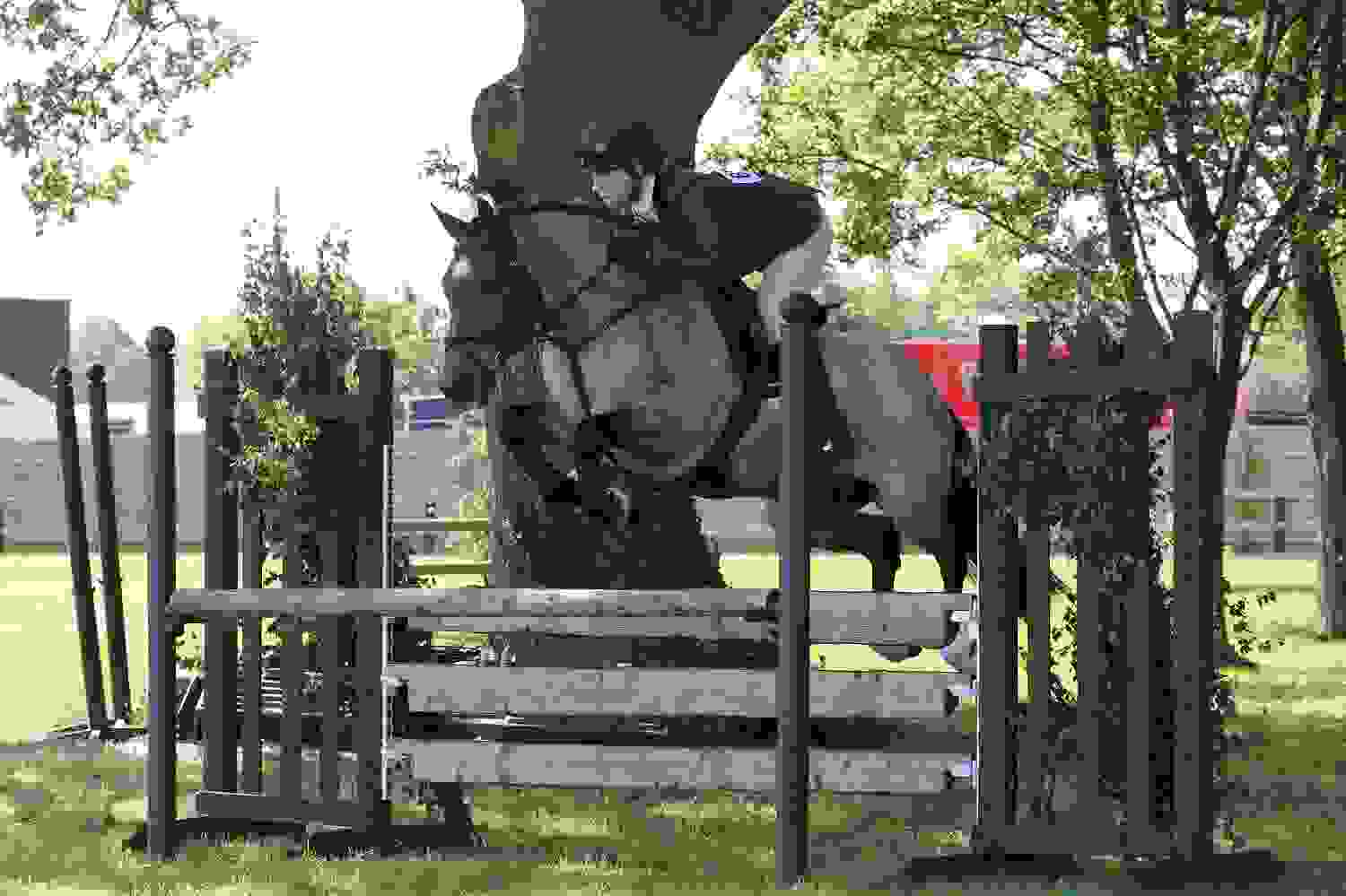Equine Village - Jumping - Royal Three Counties Show.jpg
