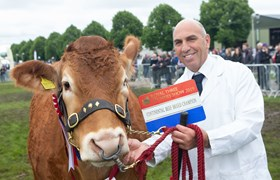 Continental Beef Champion, Limousin at Royal Three Counties Show.jpg
