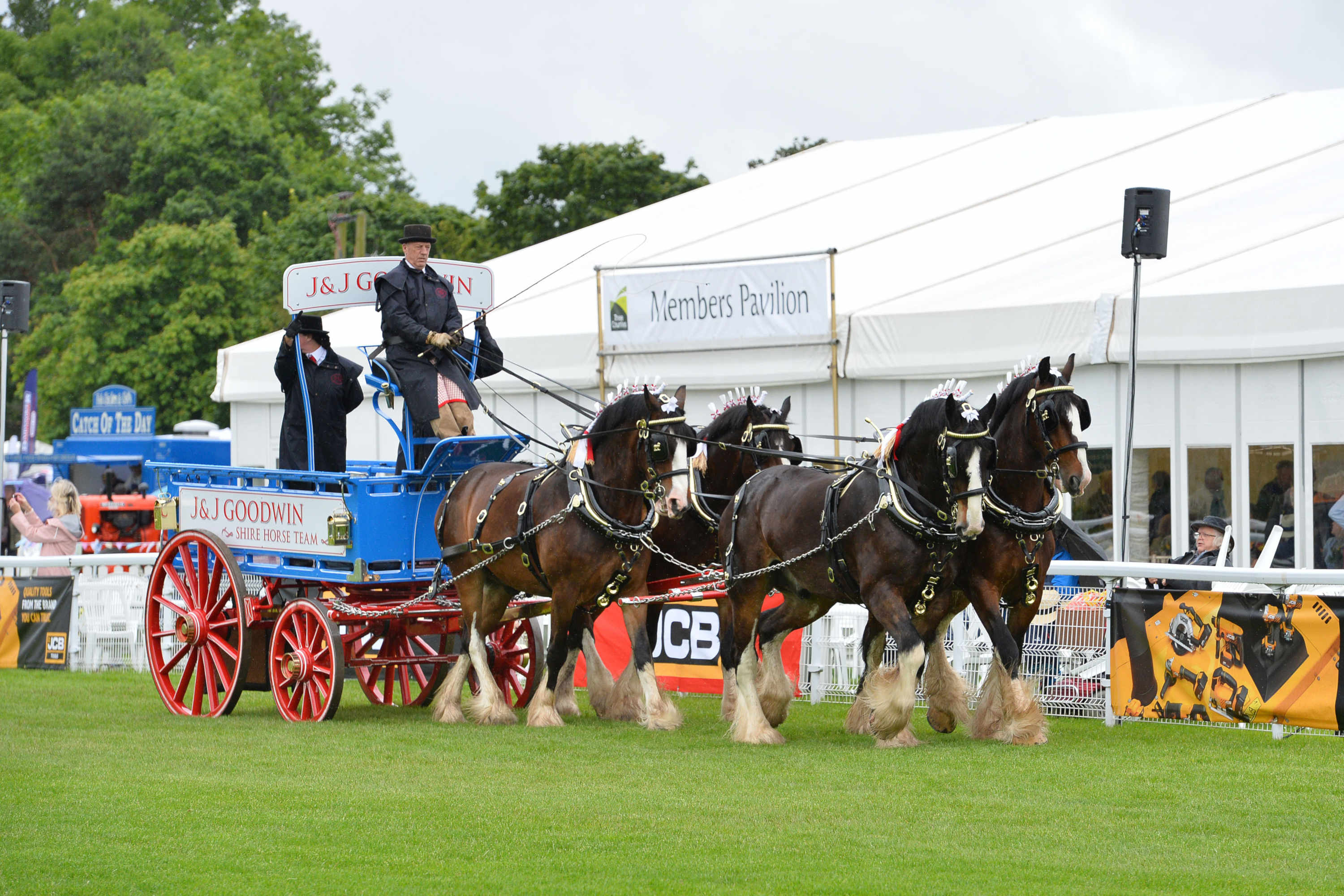 Equine Village at Royal Three Counties Show
